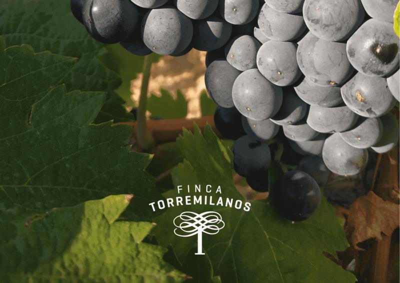 hollejo de la uva